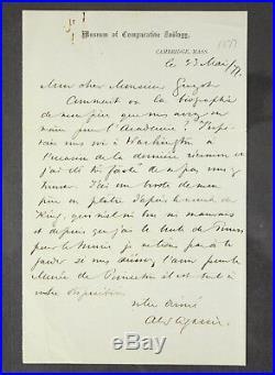 Genuine Original Alexander Agassiz Signed Handwritten Letter 1877 Museum Zoology